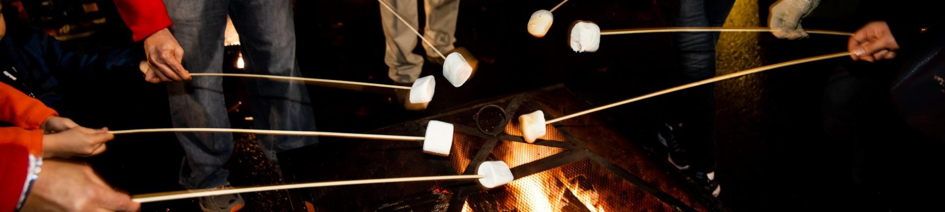 Marshmallow Roasting at Downtown Christmas Magic, True Light Photography